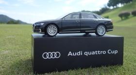 Audi quattro Cup 2018 in 東児が丘マリンヒルズGC